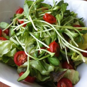 Sprouts, Butter Lettuce, Avocado and Cherry Tomato Salad
